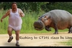 CT101-meme-2
