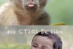 CT101-meme-3